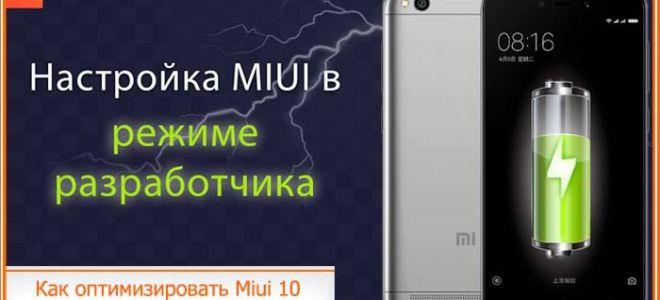 Как оптимизировать Miui 10: что это за функция, настройки разработчика