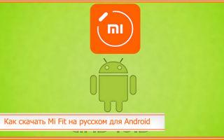 Как скачать Mi Fit на русском для Android: где скачать последнюю версию